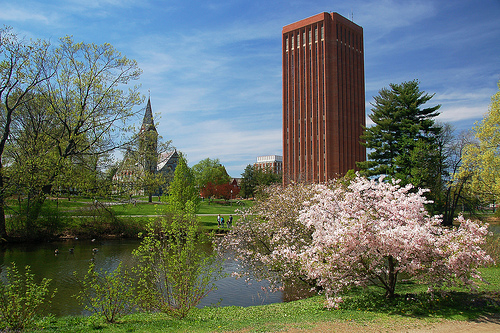 UMASS Amherst - Top 15 Online Hotel and Hospitality Management Degree Programs